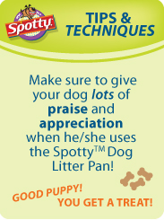 Image of Dog Litter tip #1