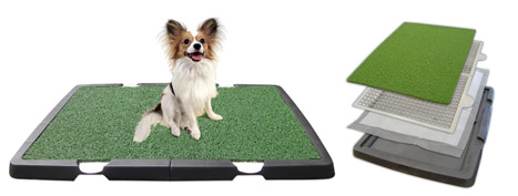 Spotty Dog Training - Products: Training Place